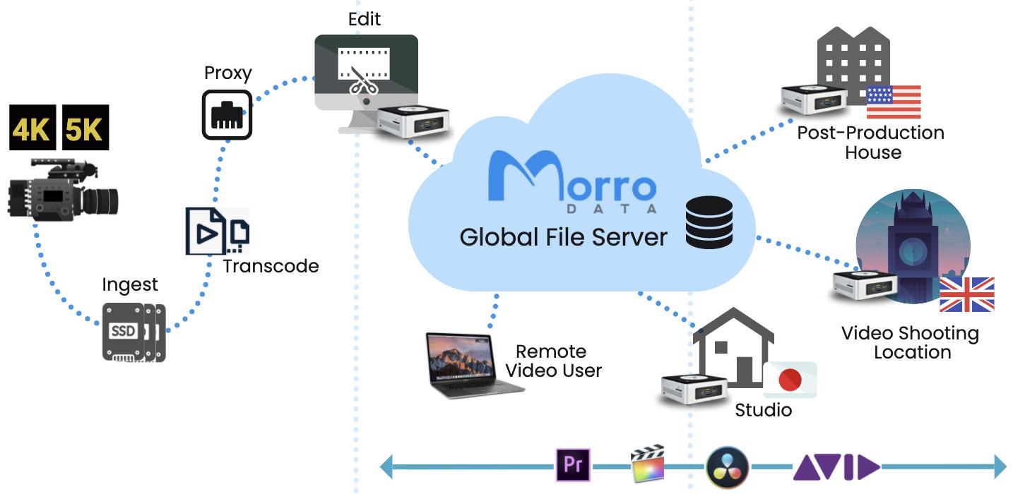 Media & Dailies Workflow