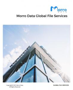 Morro Data Global File Services